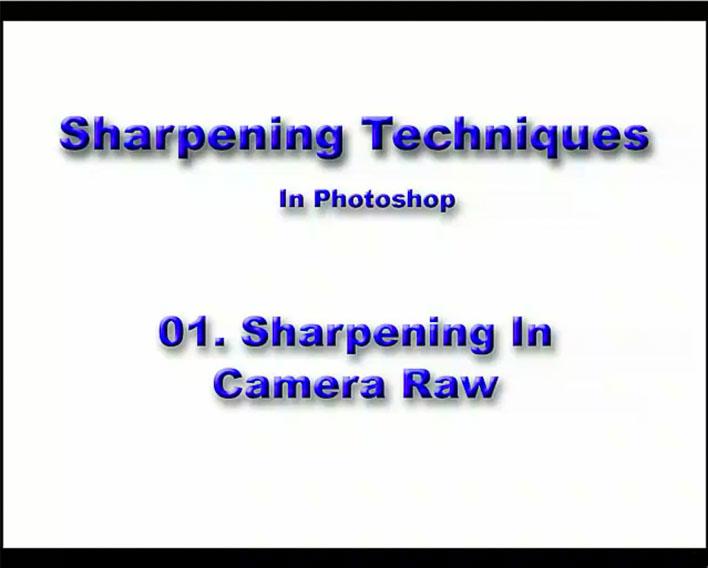 01 Camera Raw Sharpening - C  H  Behrman Photography